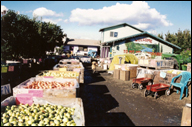 Mt. View Orchards Fruit Stand