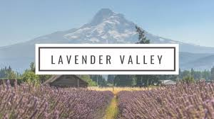 Lavender VAlley with sign