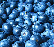 Beautiful blueberries!